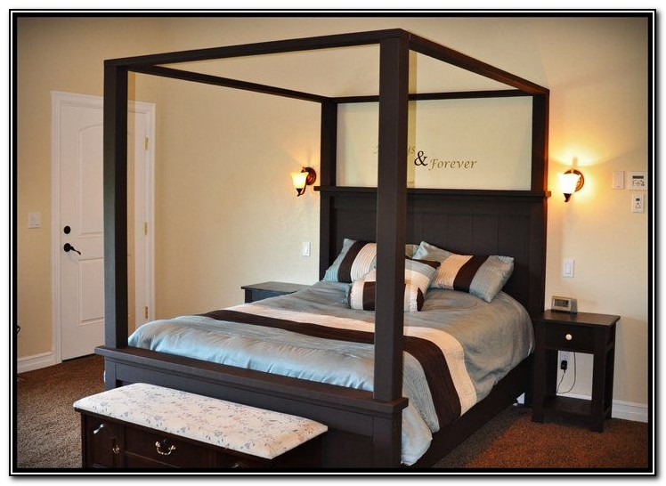 Ana White Canopy Bed